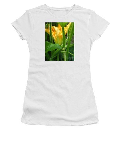 Pumpkin Blossom Women's T-Shirt (Junior Cut) by Christina Verdgeline