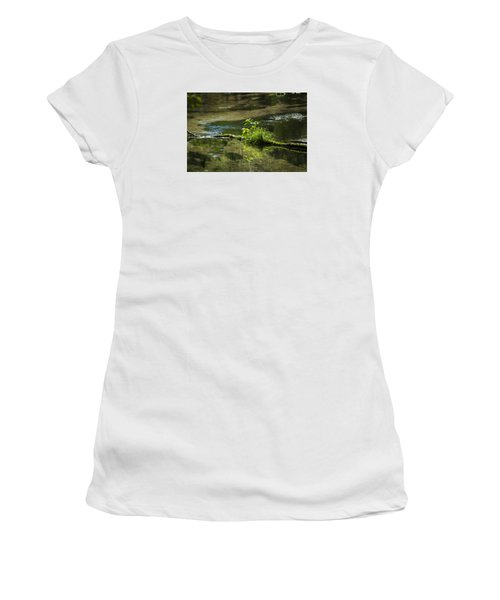 Quiet Trout Stream Women's T-Shirt