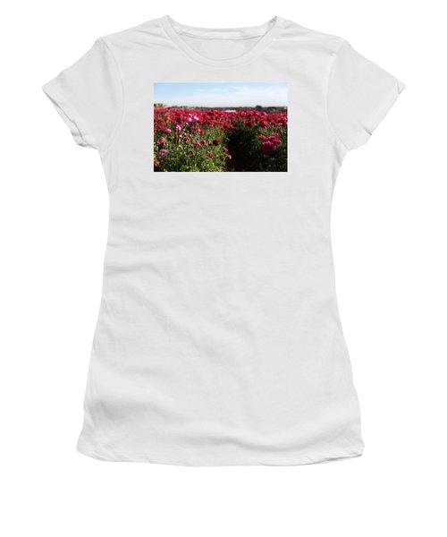 Ranunculus Field Women's T-Shirt