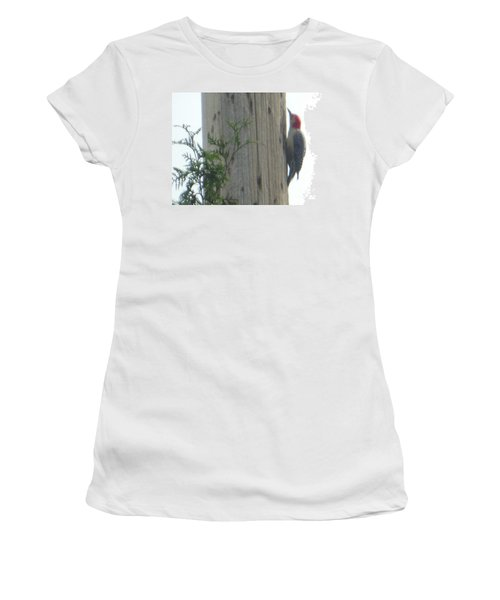 Women's T-Shirt featuring the photograph Red Bellied Woodpecker by Rockin Docks Deluxephotos