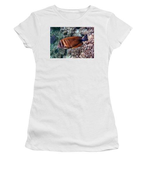 Red Sea Sailfin Tang 3 Women's T-Shirt
