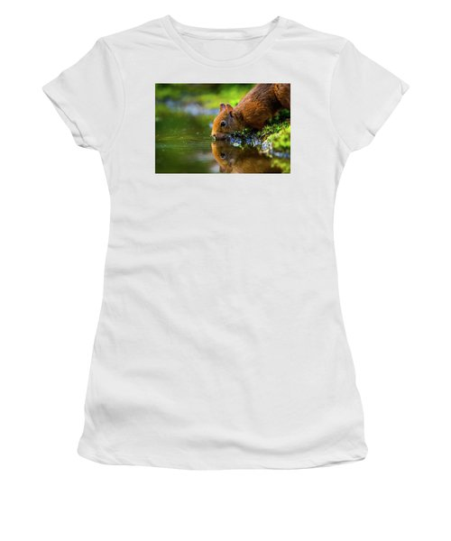 Red Squirrel Women's T-Shirt