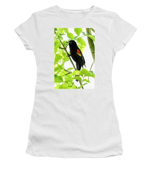 Red-winged Blackbird Women's T-Shirt