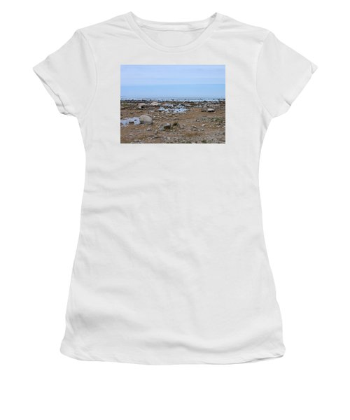 Rocky Shore Women's T-Shirt