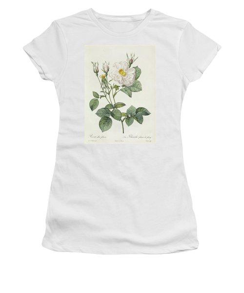 Rosa Alba Foliacea Women's T-Shirt