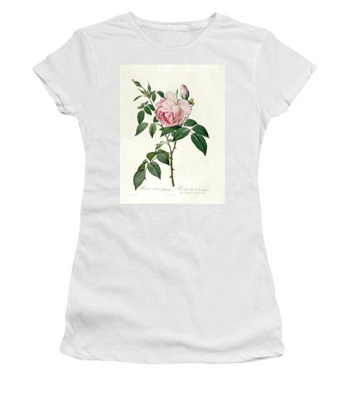 Rosa Chinensis And Rosa Gigantea Women's T-Shirt