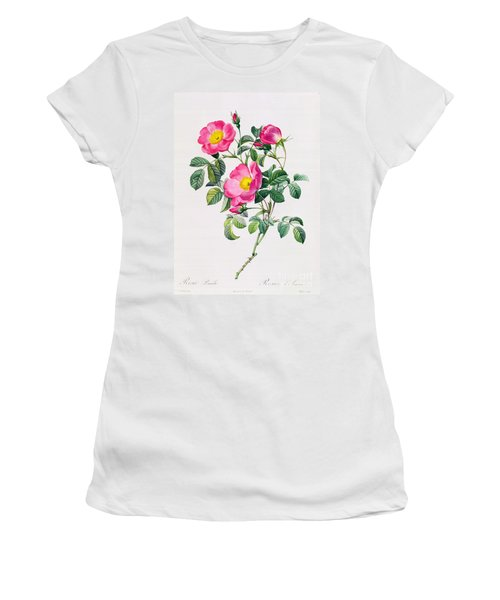 Rosa Lumila Women's T-Shirt