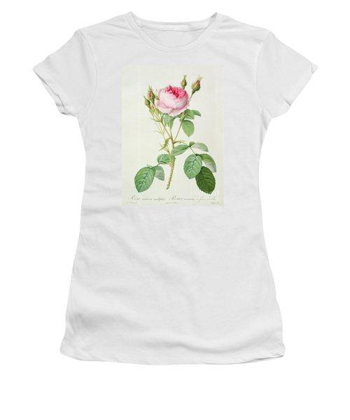 Rosa Muscosa Multiplex Women's T-Shirt