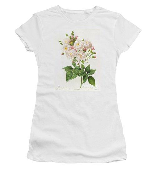 Rosa Noisettiana Women's T-Shirt