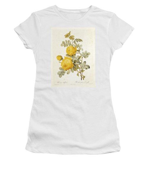 Rosa Sulfurea Women's T-Shirt