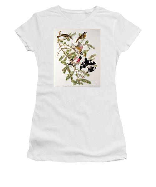 Rose Breasted Grosbeak Women's T-Shirt