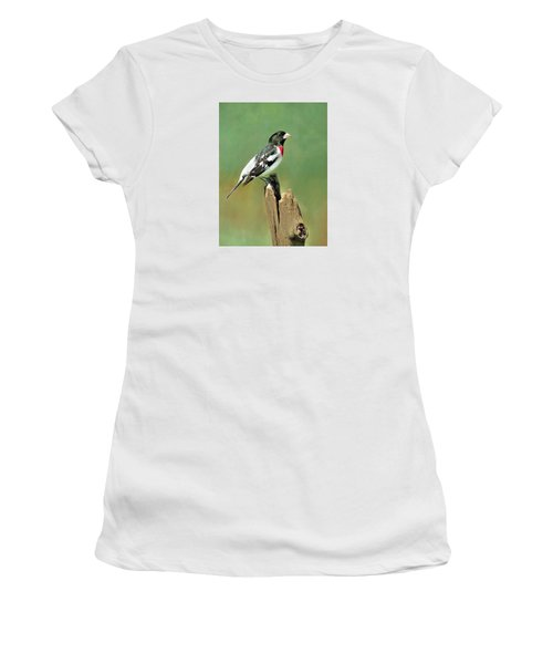 Rose Breasted Grosbeak Women's T-Shirt (Athletic Fit)