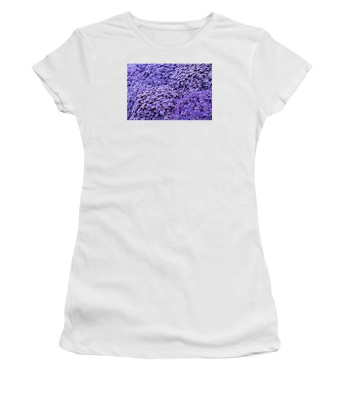 Sea Of Lavender Flowers Women's T-Shirt