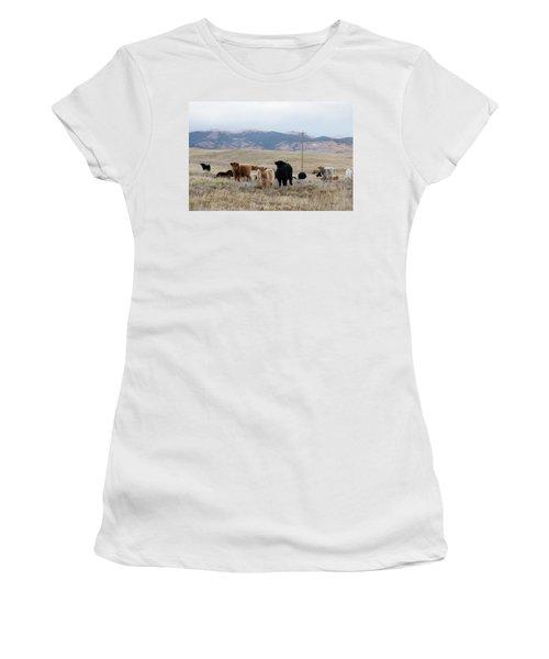 Shaggy-coated Cattle Near Jefferson Women's T-Shirt (Junior Cut) by Carol M Highsmith