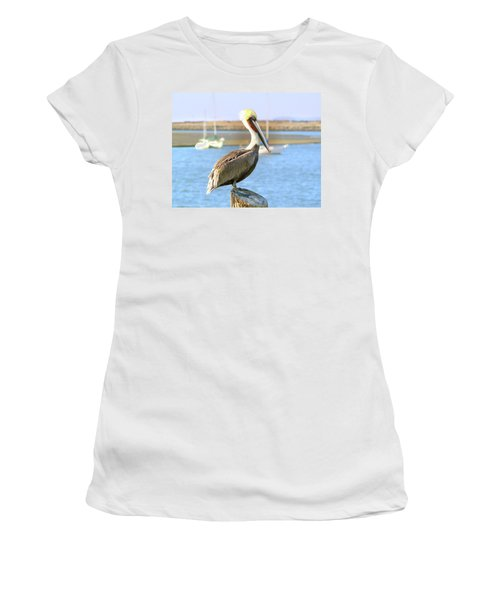 Shy Brown Pelican Women's T-Shirt (Junior Cut) by Haleh Mahbod