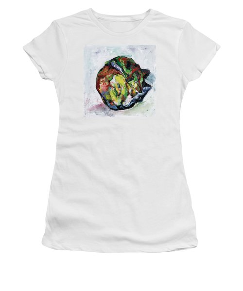 Sleeping Dog_3 Women's T-Shirt