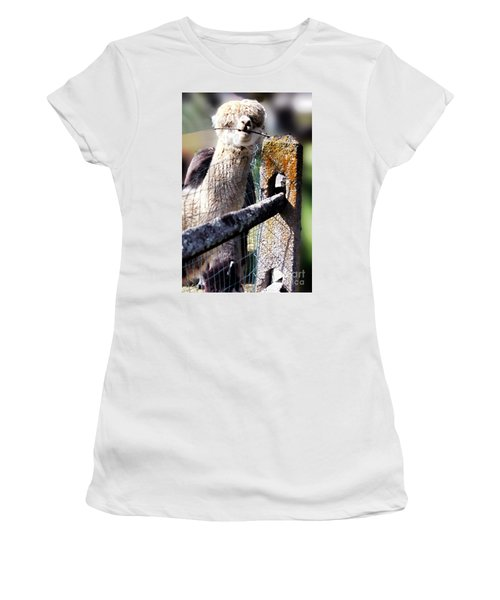 Women's T-Shirt (Junior Cut) featuring the photograph Sticks Taste Good by Polly Peacock