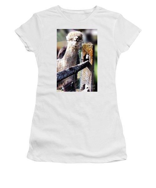 Sticks Taste Good Women's T-Shirt (Athletic Fit)