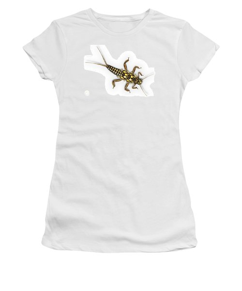 Stonefly Larva Nymph Plecoptera Perla Marginata - Steinflue -  Women's T-Shirt
