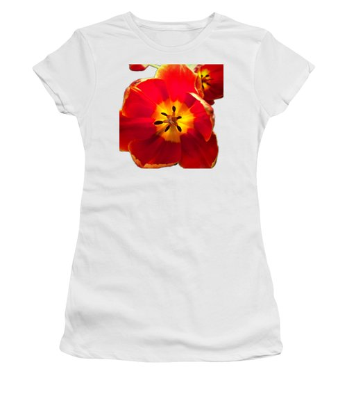 Sunkissed Tulips Women's T-Shirt