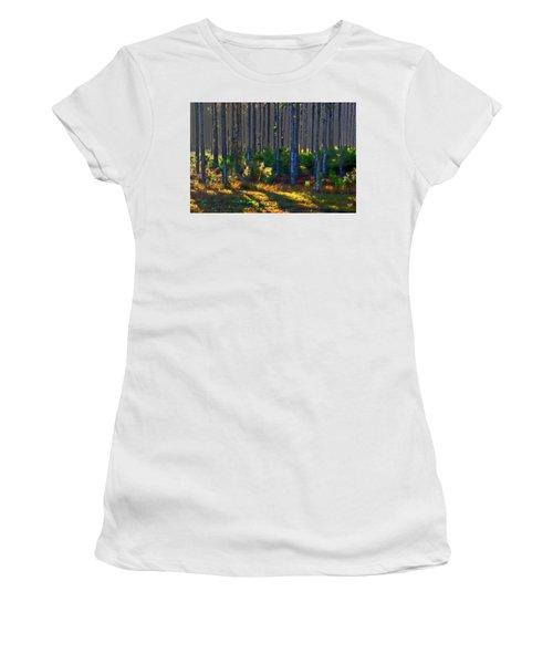 Sunrise On Tree Trunks Women's T-Shirt