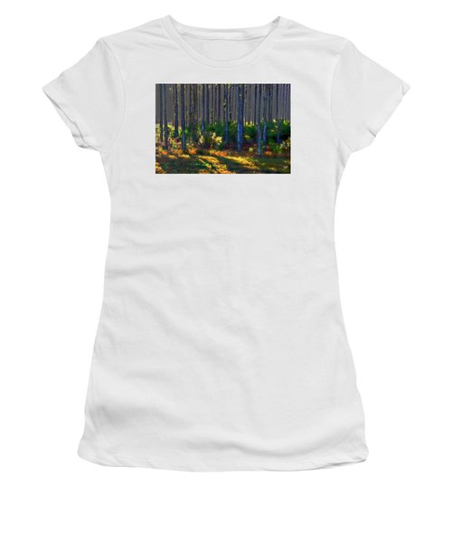 Sunrise On Tree Trunks Women's T-Shirt