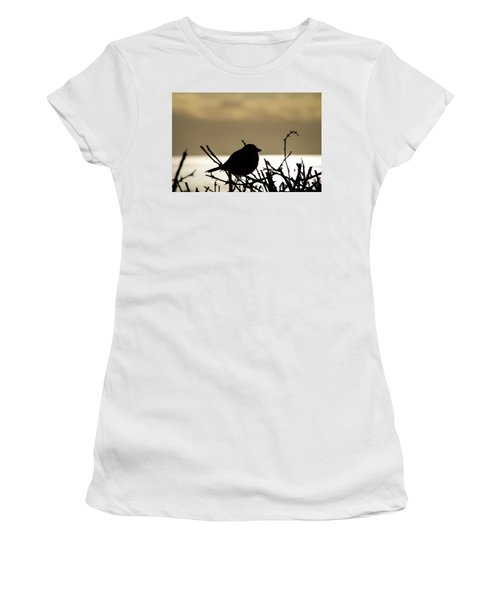Sunset Bird Silhouette Women's T-Shirt (Athletic Fit)
