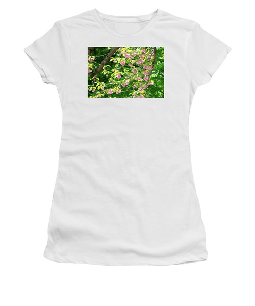 Sweeping Cherry Blossom Branches Women's T-Shirt