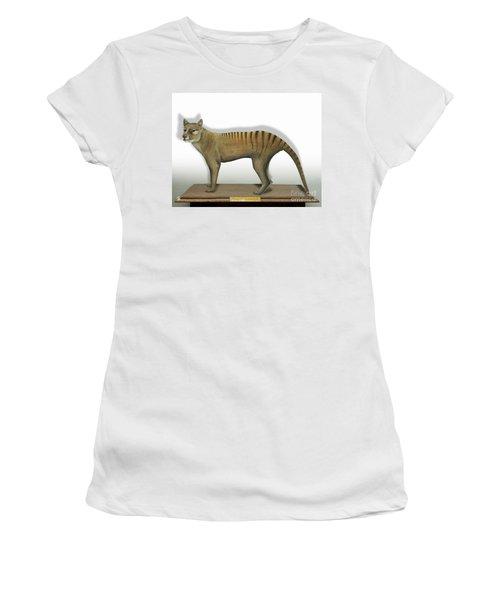 Tasmanian Tiger-thylacinus Cynocephalus-tasmanian Wolf-lobo De Tasmania-tasmanian Loup-beutelwolf    Women's T-Shirt
