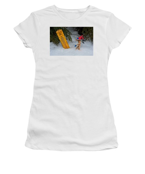 The Snowstorm Women's T-Shirt (Athletic Fit)