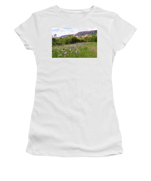 Thistles In The Canyon Women's T-Shirt