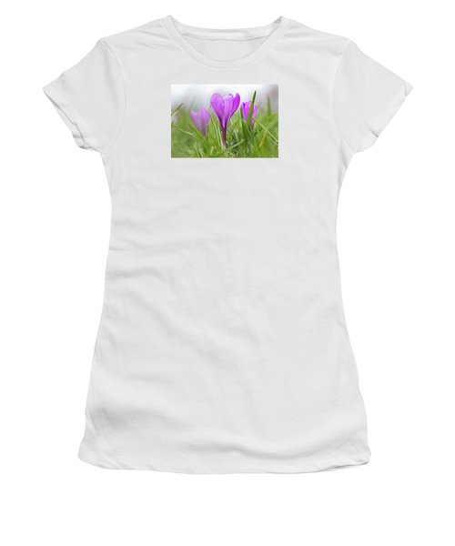 Three Glorious Spring Crocuses Women's T-Shirt (Athletic Fit)