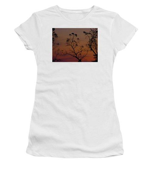 Tree Top After Sunset Women's T-Shirt (Junior Cut) by Donald C Morgan