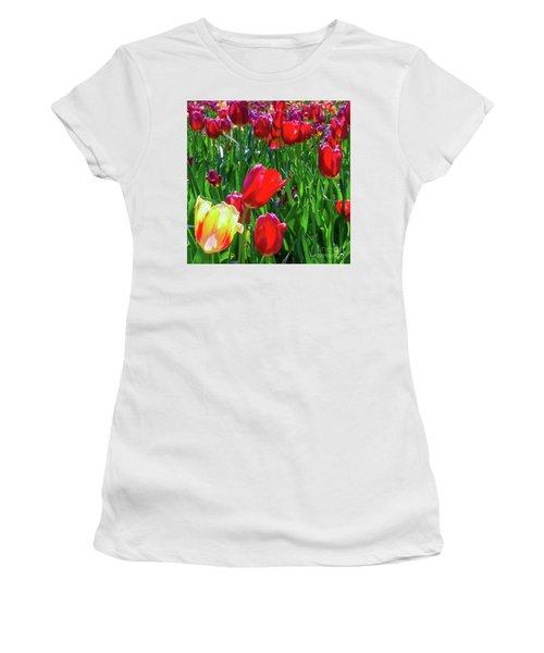 Tulip Garden In Bloom Women's T-Shirt