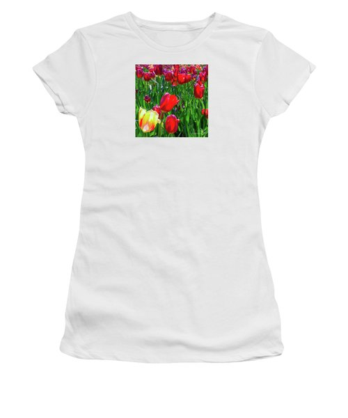 Tulip Garden In Bloom Women's T-Shirt