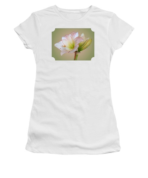 Unfurling Beauty - White Amaryllis With Red Trim Women's T-Shirt