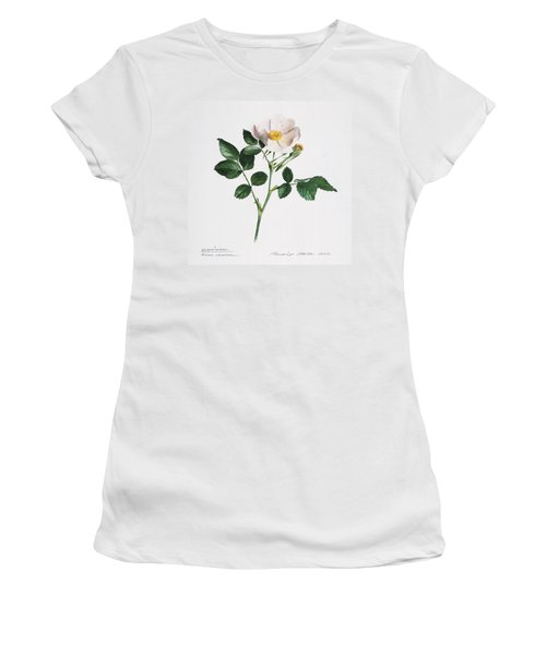Wild Rose Women's T-Shirt
