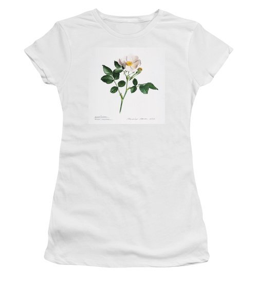 Wild Rose Women's T-Shirt (Athletic Fit)
