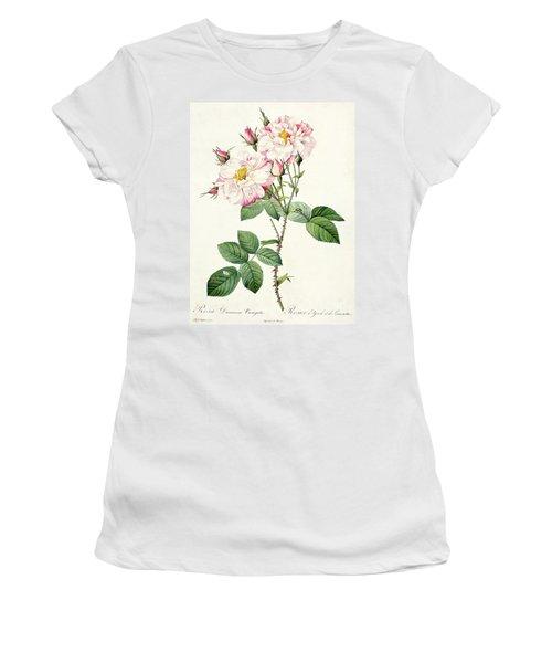 York And Lancaster Rose Women's T-Shirt
