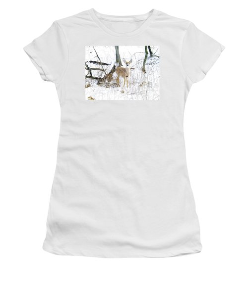 Young Doe And Spring Snow Women's T-Shirt