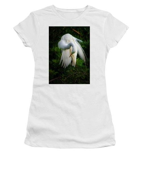 Breeding Plumage And Color Women's T-Shirt