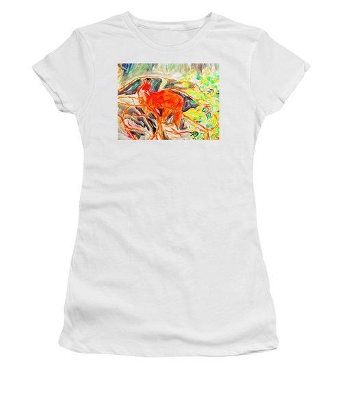 Hidden Fox Women's T-Shirt