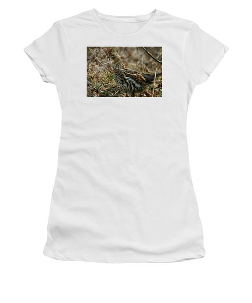 Ruffed Grouse 50702 Women's T-Shirt