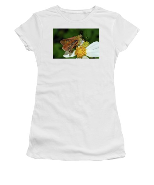 Skipper Butterfly Women's T-Shirt