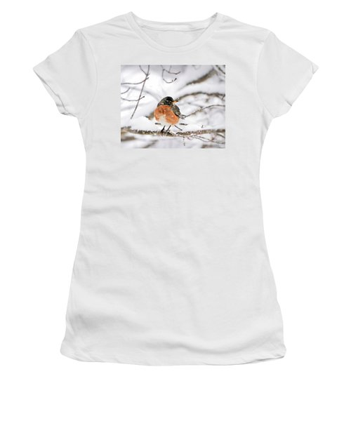 American Robin In The Snow Women's T-Shirt