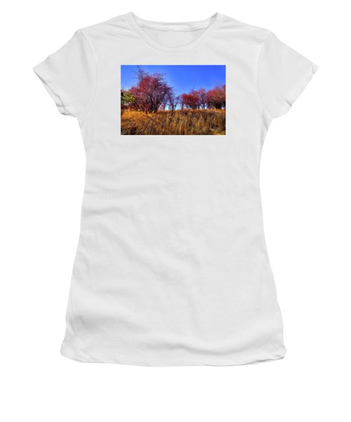 Women's T-Shirt featuring the photograph Autumn Sun by David Patterson