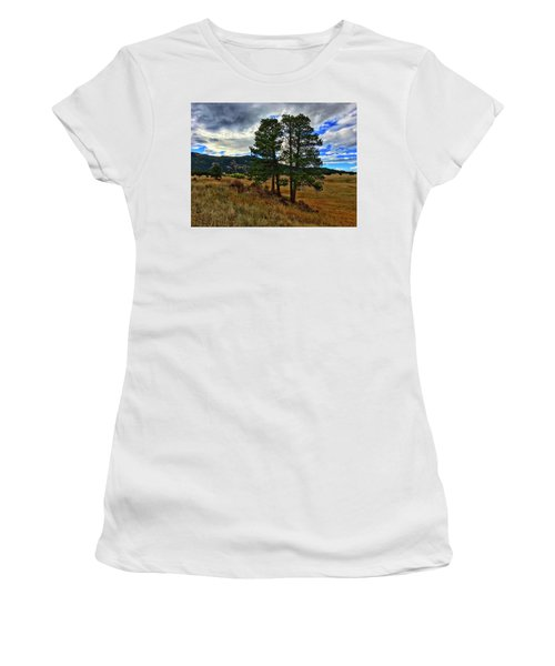 Women's T-Shirt featuring the photograph Backlit Pine by Dan Miller