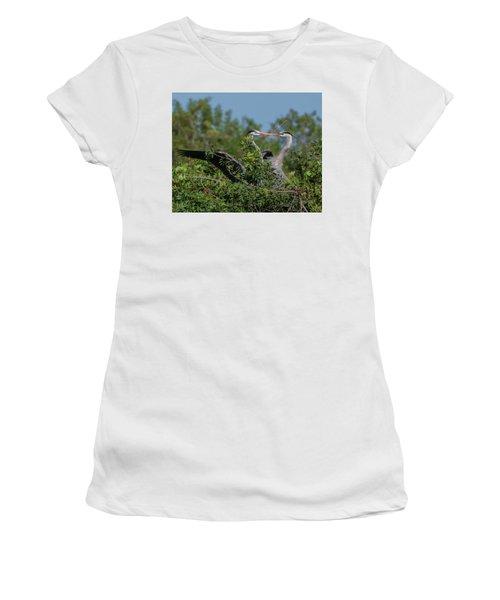Breeding Herons Women's T-Shirt