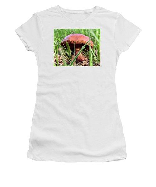 Bug On Boletus Edulis Women's T-Shirt