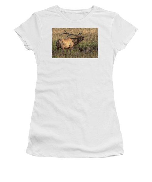 Bugling Bull Elk 7777 Women's T-Shirt
